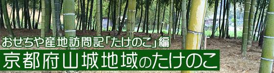 おせちや産地訪問記「たけのこ」編・京都府山城地域のたけのこ