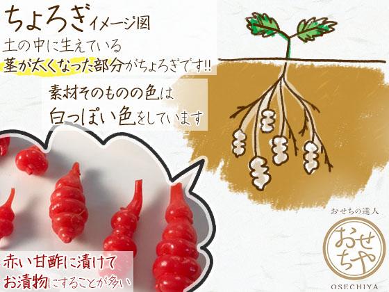 ちょろぎの意味や由来とは?おせちに入っている赤いアレ_ちょろぎの正体は「茎」