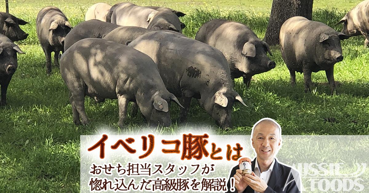 イベリコ豚とは。おせち担当スタッフが惚れ込んだ高級豚を解説!